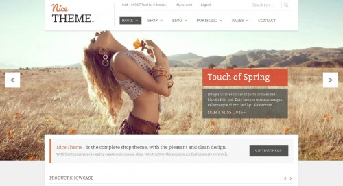 NiceTheme - WordPress & Woocommerce Theme