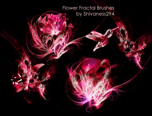 New Flower Fractal Brushes