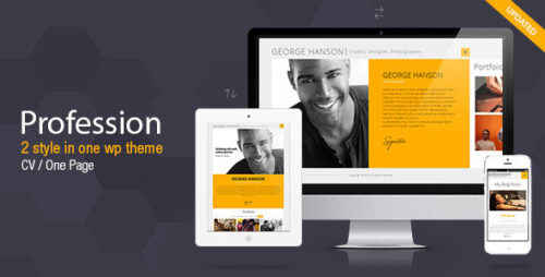 Profession - One Page CV Resume Theme