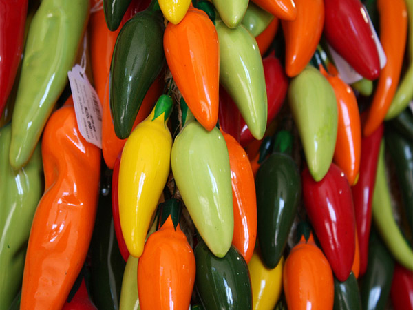 colorful-chillies
