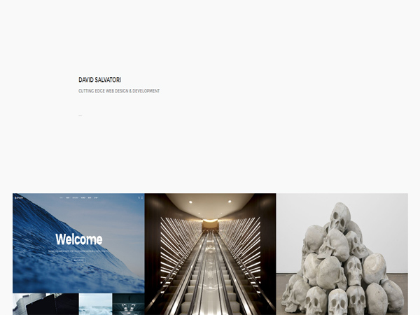 davidsalvatori - single page website designs